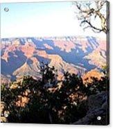 Grand Canyon 61 Acrylic Print