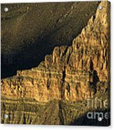 Grand Canyon Bathed In Light Acrylic Print