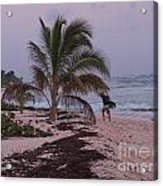 Grand Cayman Surfer Acrylic Print