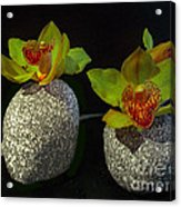 Granite Orchids Acrylic Print