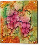 Grapes With Rust Background Acrylic Print