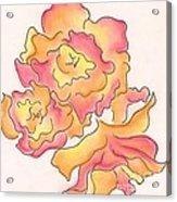 Graphic Rose Acrylic Print