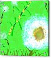 Grassy Acrylic Print