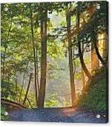 Gravel Road At Sunrise, Pelham, Ontario Acrylic Print by Darwin Wiggett
