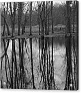 Gray Day Reflections Acrylic Print