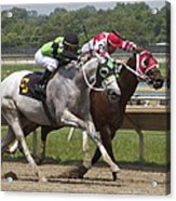 Gray Vs Bay Acrylic Print
