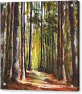 Great Brook Farm Summer Path Acrylic Print