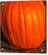 Great Orange Pumpkin Acrylic Print