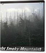 Great Smoky Mountains National Park 8 Acrylic Print