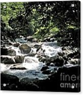 Great Stream Great Smokeys Acrylic Print by Don F  Bradford