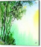 Green 1 Acrylic Print