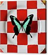Green And Black Butterfly On Red Checker Plate Acrylic Print