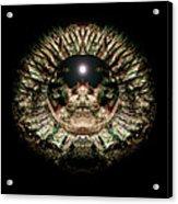 Green Eye Sphere Acrylic Print