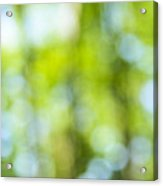 Green Forest And Blue Sky Acrylic Print