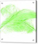 Green Ghost Acrylic Print