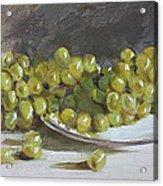 Green Grapes  Acrylic Print