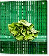 Green Greens Acrylic Print