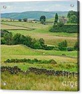 Green Hills Of Galloway Acrylic Print by John Kelly
