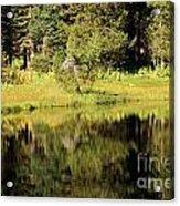 Green In Summit Lake Acrylic Print