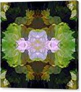Green Peony Extreme Acrylic Print