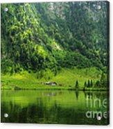 Green Reflections Acrylic Print