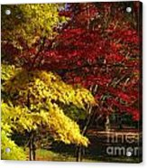 Green Yellow Red Acrylic Print
