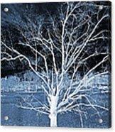 Grey Magical Tree Acrylic Print