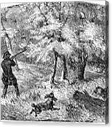 Grouse Hunting, 1855 Acrylic Print
