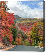 Guardsman Pass To Midway In The Fall - Utah Acrylic Print