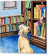 Guide Dog Training Acrylic Print