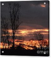 Guilded Sunset Acrylic Print
