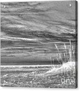 Gulf Breeze Acrylic Print
