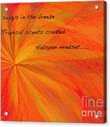 Halcyon Haiku Acrylic Print