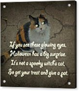 Halloween Calico Cat And Poem Greeting Card Acrylic Print