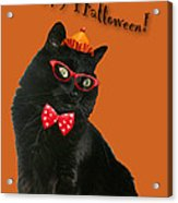 Halloween Card - Black Cat Ready To Party Acrylic Print