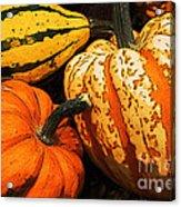 Halloween Colors Acrylic Print