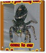 Halloween Party Invitation - Salticid Jumping Spider Acrylic Print