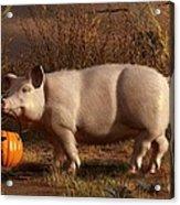 Halloween Pig Acrylic Print