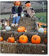Halloween Pumpkin Patch 7d8476 Acrylic Print by Wingsdomain Art and Photography