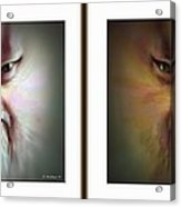Halloween Self Portrait - Gently Cross Your Eyes And Focus On The Middle Image Acrylic Print