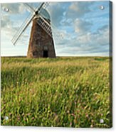 Halnaker Windmill On A July Afternoon Acrylic Print