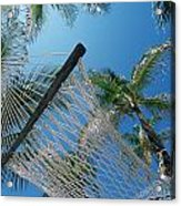 Hammock And Palm Tree, Great Barrier Acrylic Print
