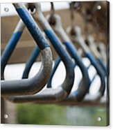 Hang In There Acrylic Print