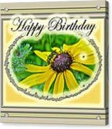 Happy Birthday Card    Black-eyed Susan And Bee Acrylic Print