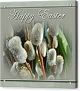 Happy Easter Greeting Card - Pussywillows Acrylic Print