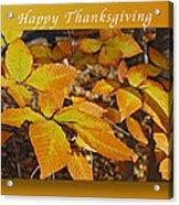 Happy Thanksgiving Beech Leaves Acrylic Print