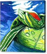 Happy Turtle Acrylic Print