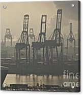 Harbor Cranes Acrylic Print