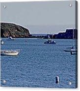 Harbor On The California Coast Acrylic Print