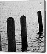 Harbor Ties Acrylic Print